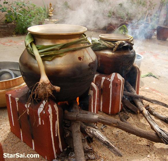 pongal festival of tamilians tamil nadu india